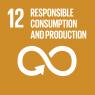 E_SDG goals_icons-individual-rgb-12